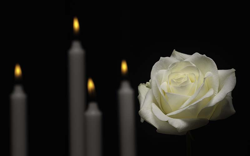 Rose and Candle Dark Backround